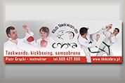 Banner reklamowy - Cobra Taekwondo